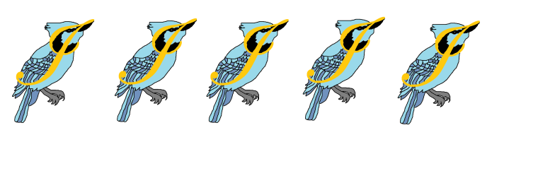 five blue jays